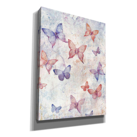 'In Flight I' by Tim O'Toole, Canvas Wall Art
