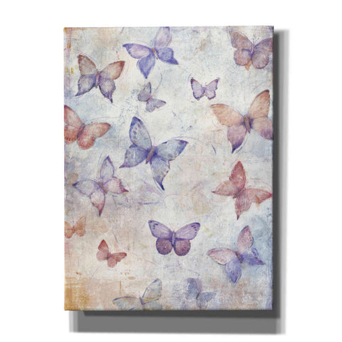 Image of 'In Flight II' by Tim O'Toole, Canvas Wall Art