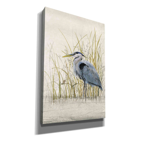 Image of 'Heron Sanctuary II' by Tim O'Toole, Canvas Wall Art