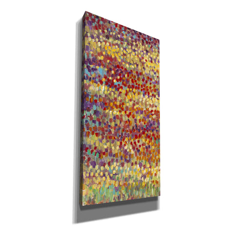 'Tulips in Bloom I' by Tim O'Toole, Canvas Wall Art