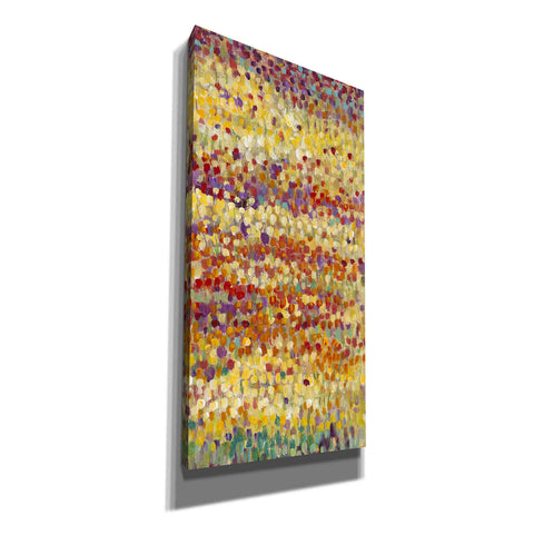 'Tulips in Bloom II' by Tim O'Toole, Canvas Wall Art