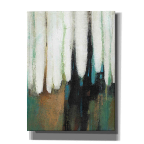 'Falling Colors I' by Tim O'Toole, Canvas Wall Art