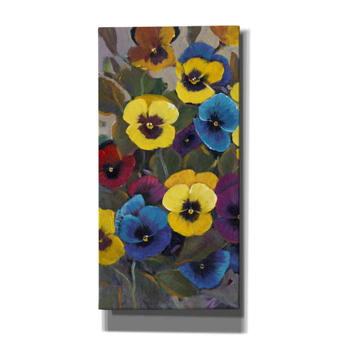 'Pansy Panel I' by Tim O'Toole, Canvas Wall Art