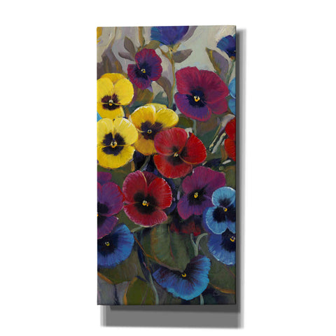 'Pansy Panel II' by Tim O'Toole, Canvas Wall Art