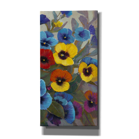 'Pansy Panel III' by Tim O'Toole, Canvas Wall Art