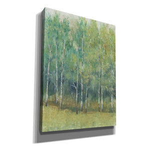 'Woodland Edge I' by Tim O'Toole, Canvas Wall Art