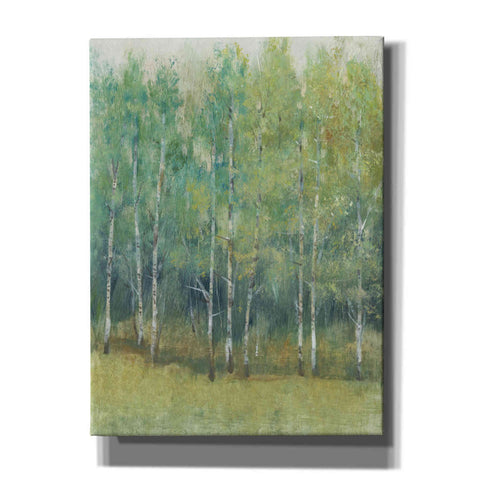 Image of 'Woodland Edge I' by Tim O'Toole, Canvas Wall Art