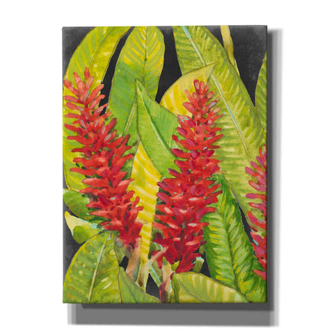 'Red Tropical Flowers I' by Tim O'Toole, Canvas Wall Art