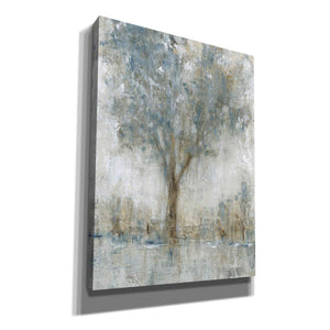 'Morning Glow II' by Tim O'Toole, Canvas Wall Art