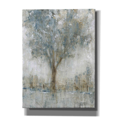 Image of 'Morning Glow II' by Tim O'Toole, Canvas Wall Art