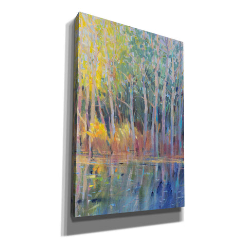 Image of 'Reflected Trees I' by Tim O'Toole, Canvas Wall Art