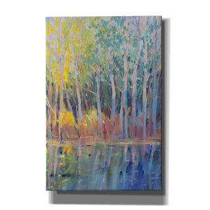 'Reflected Trees I' by Tim O'Toole, Canvas Wall Art