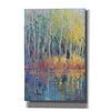'Reflected Trees II' by Tim O'Toole, Canvas Wall Art