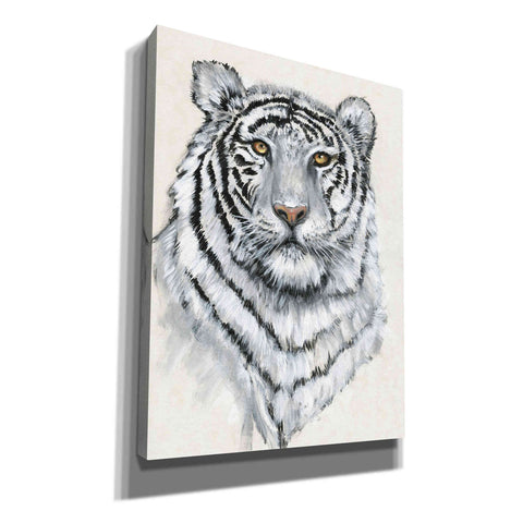 'White Tiger II' by Tim O'Toole, Canvas Wall Art