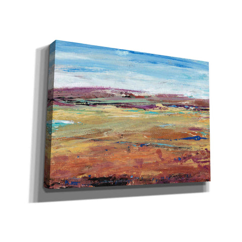 Image of 'Terra Vista I' by Tim O'Toole, Canvas Wall Art