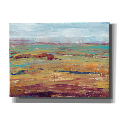 Image of 'Terra Vista II' by Tim O'Toole, Canvas Wall Art