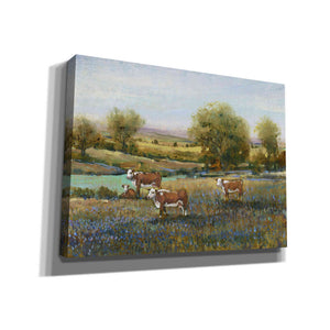 'Field of Cattle II' by Tim O'Toole, Canvas Wall Art