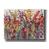 'Variety of Flowers II' by Tim O'Toole, Canvas Wall Art