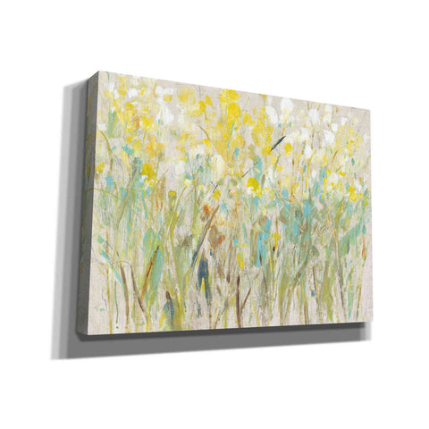 Image of 'Floral Cluster I' by Tim O'Toole, Canvas Wall Art