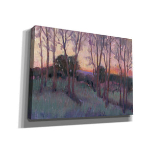 'Morning Light II' by Tim O'Toole, Canvas Wall Art