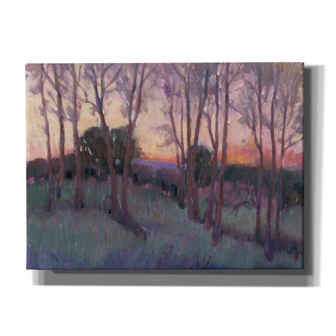 Image of 'Morning Light II' by Tim O'Toole, Canvas Wall Art