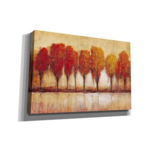 'Autumn Water's Edge' by Tim O'Toole, Canvas Wall Art