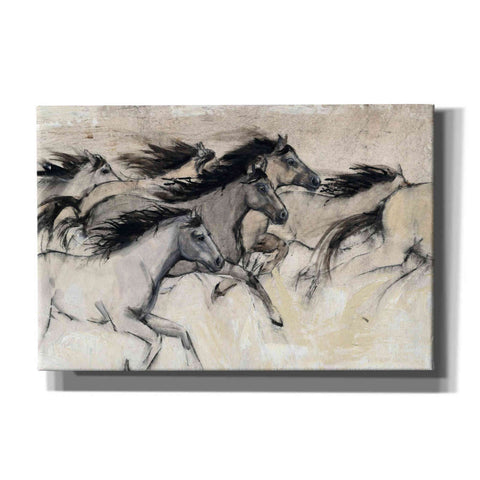 'Horses in Motion I' by Tim O'Toole, Canvas Wall Art