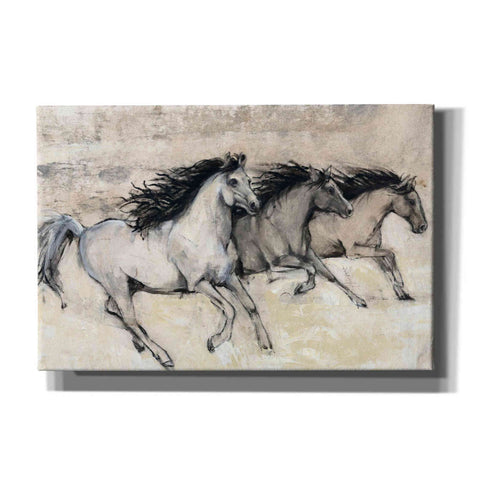 'Horses in Motion II' by Tim O'Toole, Canvas Wall Art