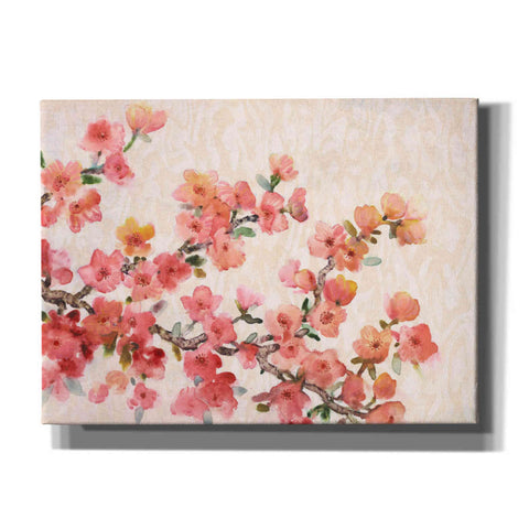 Image of 'Cherry Blossom Composition II' by Tim O'Toole, Canvas Wall Art