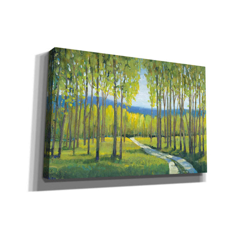 Image of 'Morning Stroll I' by Tim O'Toole, Canvas Wall Art