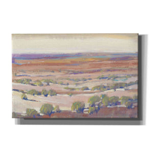 'High Desert Pastels I' by Tim O'Toole, Canvas Wall Art