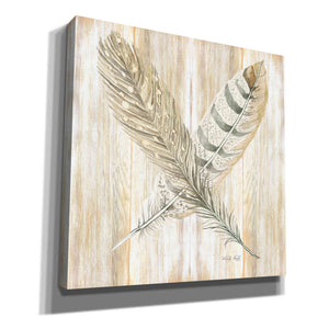 'Feathers Crossed II' by Cindy Jacobs, Canvas Wall Art
