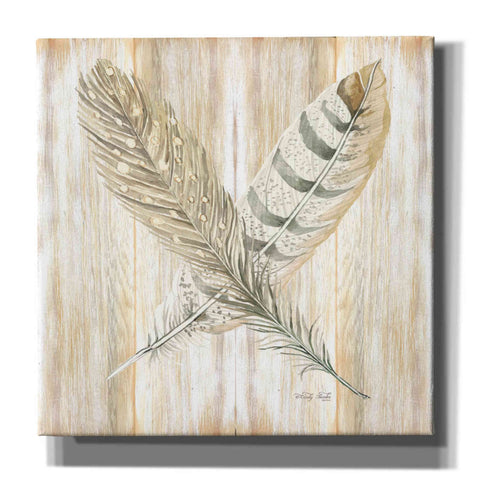 Image of 'Feathers Crossed II' by Cindy Jacobs, Canvas Wall Art