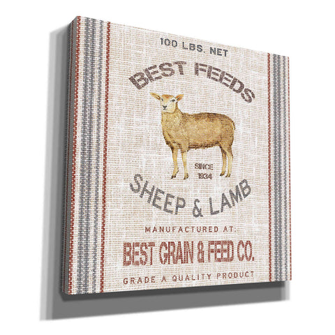 Image of 'Best Feeds' by Cindy Jacobs, Canvas Wall Art