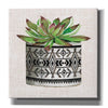 'Cactus Mud Cloth Vase I' by Cindy Jacobs, Canvas Wall Art