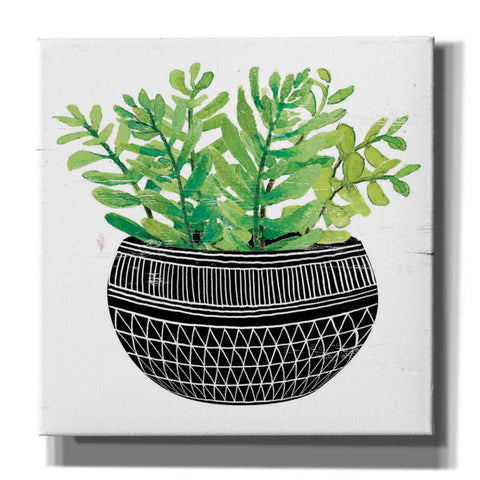 Image of 'Mud Cloth Succulent V' by Cindy Jacobs, Canvas Wall Art
