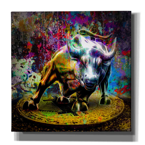 'Bitcoin Bull Market,' Canvas Wall Art