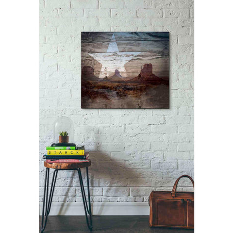 'Desert Star' by Kyra Brown, Canvas Wall Art,30 x 26