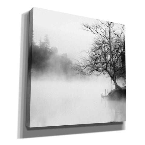 'Fog on the Lake' by Yellow Cafe, Canvas Wall Art,Size 1 Square