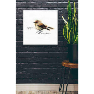 'Finch' by Yellow Cafe, Canvas Wall Art,26 x 26