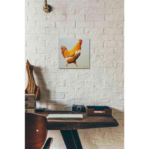'Blonde Chicken' by Yellow Cafe, Canvas Wall Art,12 x 12