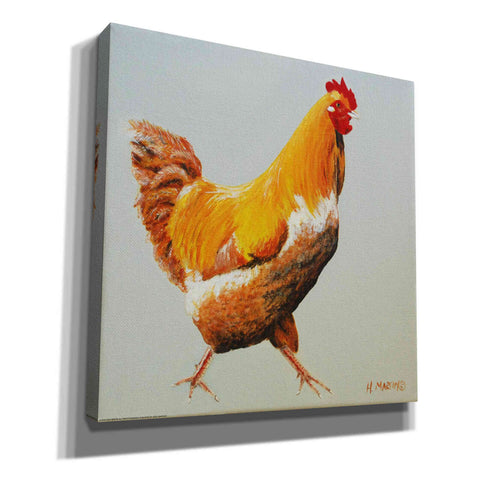 'Blonde Chicken' by Yellow Cafe, Canvas Wall Art,Size 1 Square