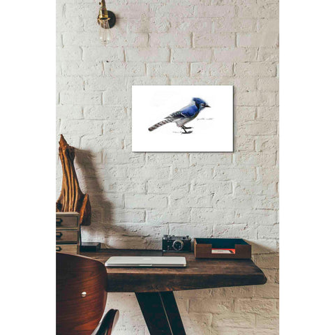 'Blue Jay' by Yellow Cafe, Canvas Wall Art,18 x 12