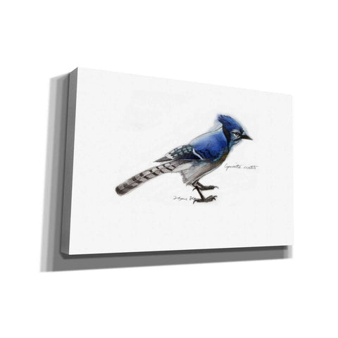 'Blue Jay' by Yellow Cafe, Canvas Wall Art,Size A Landscape