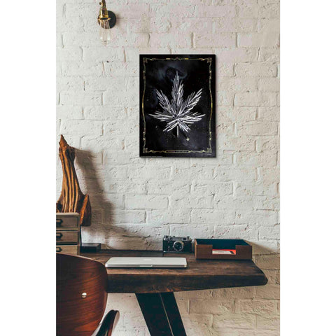 'Carpe Cannabis' by Yellow Cafe, Canvas Wall Art,12 x 16