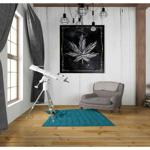 'Carpe Cannabis' by Yellow Cafe, Canvas Wall Art,26 x 30