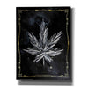 'Carpe Cannabis' by Yellow Cafe, Canvas Wall Art,Size C Portrait