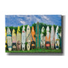 'Surfboards' by Dennis Frates, Canvas Wall Art,Size A Landscape