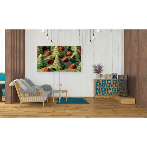 Image of 'Tree Shells' by Dennis Frates, Canvas Wall Art,40 x 26
