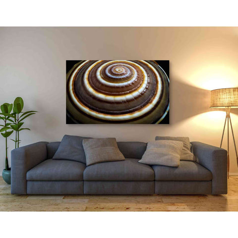 'Shell Spiral III' by Dennis Frates, Canvas Wall Art,54 x 40